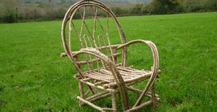 chair-field-310